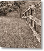 Into The Distance Bw Metal Print