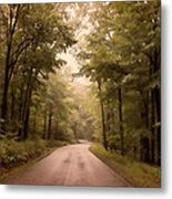 Into The Mists Metal Print
