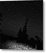 Into The Night Monochrome Metal Print