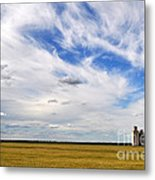 Into The Wide Open Metal Print