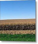 Iowa Landscape Iv Metal Print