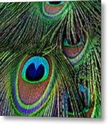 Iridescent Eyes Metal Print