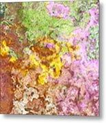 Iris Abstract I Metal Print