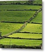 Irish Countryside Near Valenica Island Metal Print