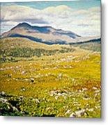 Irish Landscape 101 Metal Print