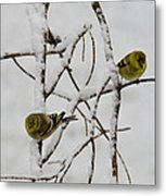 Is It Snowing On Your Side Metal Print