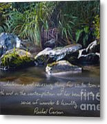 It Is A Wholesome....... Metal Print by Karen Lewis