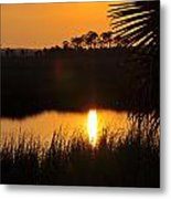 It Was A Perfect Day Metal Print