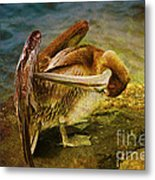 It's Cleaning Day By Pelicans Metal Print