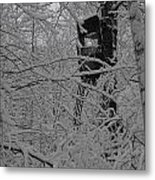 It's Not Camouflaged Anymore Metal Print