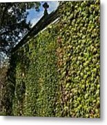 Ivy Covered Chapel Metal Print