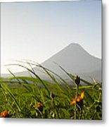 Izalco From The Ground Metal Print