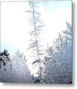 Jack Frost's Ice Forest Metal Print