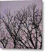 Jammer Fuzzy Trees 002 Metal Print