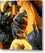 Jammer Gourds 001 Metal Print