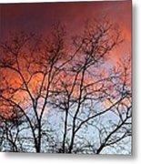 January Sunset Silhouette Metal Print