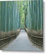 Japan Kyoto Arashiyama Sagano Bamboo Metal Print by Rob Tilley