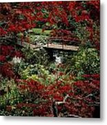 Japanese Garden, Through Acer In Metal Print