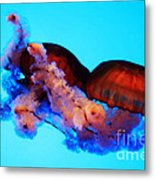 Jellyfish Drama - Digital Art Metal Print