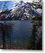 Jenny Lake In The Grand Teton Area Metal Print