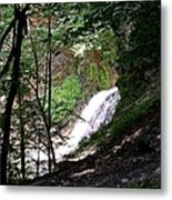 Jewell Of The Forest Metal Print