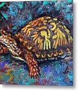 Joe Turtle Metal Print