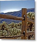 Joshua Tree Cholla Garden Metal Print