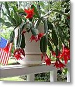 July Cactus With Old Glory Metal Print