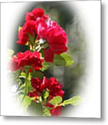 June Birthday Metal Print