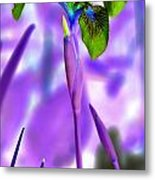 Jungle Iris Metal Print