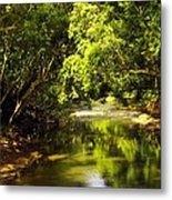 Jungle Stream Below The Secret Metal Print