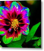Just Another Regular Flower In The Garden Metal Print
