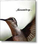 Just Wanted To Say.... Metal Print