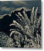 Kalalau Mountains At Night 2 Metal Print