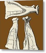 Kalmyk Bone Divination Scapulas, Artwork Metal Print by Sheila Terry