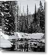 Kananaskis Creek Metal Print