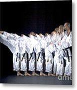 Karate Expert Metal Print