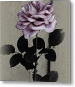Kathleen's Garden Rose Metal Print