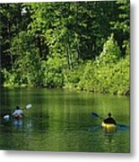 Kayakers Paddle In The Headwaters Metal Print