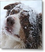 Keepstone Snows Metal Print