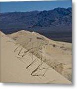 Kelso Dunes Grass Metal Print