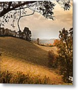 Kentucky Type Hayfields Metal Print