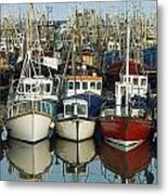 Kilkeel, Co Down, Ireland Rows Of Boats Metal Print