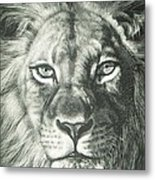 King 2 Metal Print by Joanna Gates