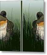 King Frog - Gently Cross Your Eyes And Focus On The Middle Image Metal Print
