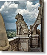 King Of The Beasts In The Land Of The Braves Metal Print