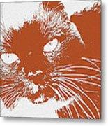 Kit Kat Metal Print