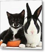 Kitten, Rabbit And Carrot Metal Print