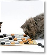 Kittens Playing Checkers Metal Print