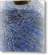 Kitty Blue Metal Print
